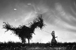 Laboile y Madoz, dos referentes fotográficos en épocas de sequíacreativa